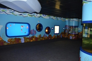 Akron Zoo's Journey To The Reef Exhibit To Close