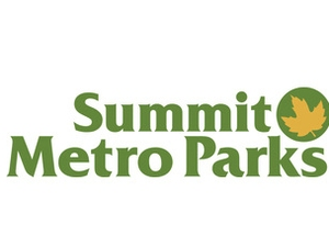 Summit Parks: Pay Attention With Pokemon Go